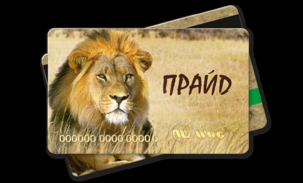 plastic cards Pride